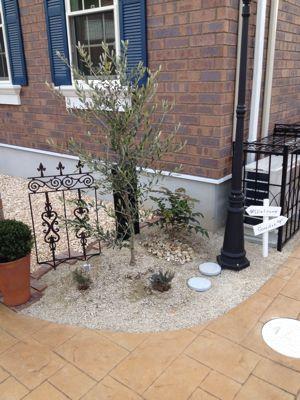 角にオリーブの樹とアイアン装飾。f0110553_519556