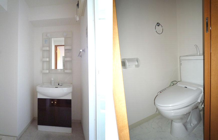 シャンプードレッサーの洗面とベイシックなウォシュレットのトイレ。