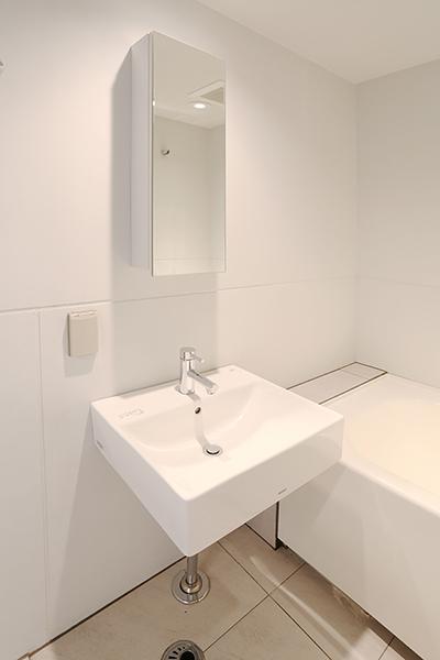 鏡付き戸棚とコンセントの付いた洗面台です。