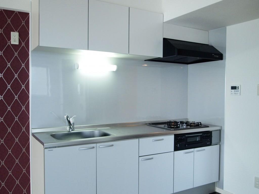 1LDKにあるキッチンとは思えないような、広々したキッチン。