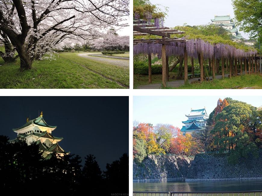 名古屋城がすぐ近くなので、お散歩コースに最適です。