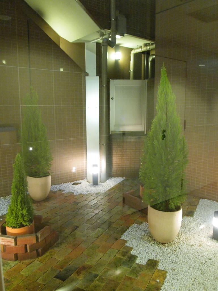 廊下からは、雰囲気のよい中庭が見れます。