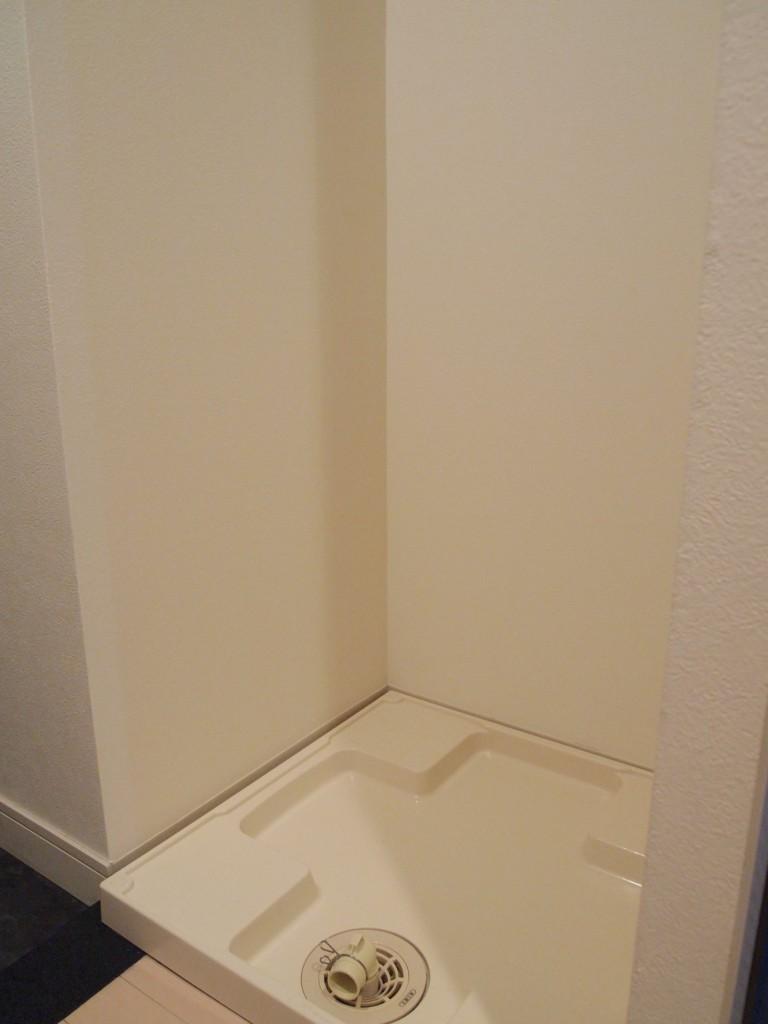 玄関入ってすぐの所に、洗濯パンが完備されています。