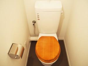 木のぬくもりを感じられるトイレです。