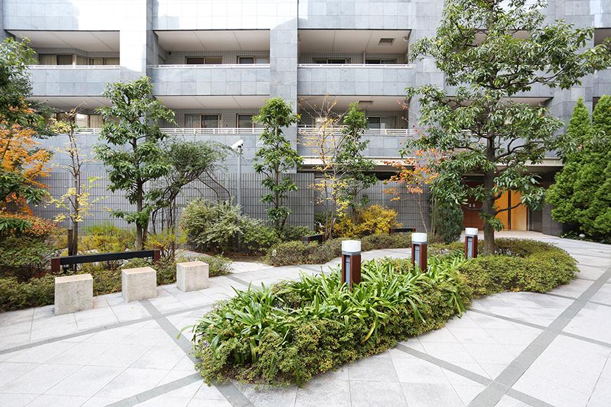 入口までのアプローチには、たくさんの緑とベンチがあります。