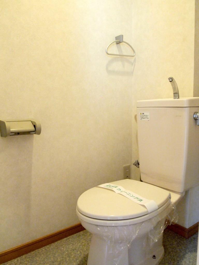 可動棚のついたシンプルなトイレです。