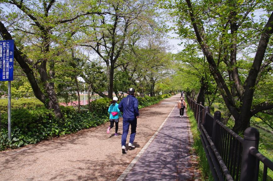 瑞穂公園でジョギングを楽しむ人_IMGP7794