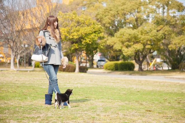 瑞穂公園でワンちゃんと気持ちのよいお散歩_pixta_10704882_S