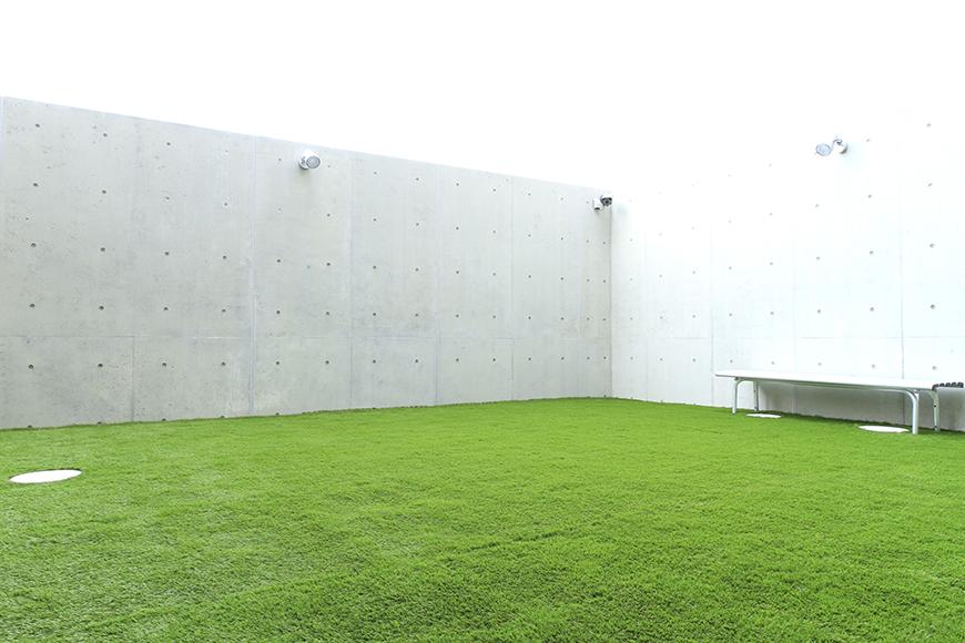 人工芝を張ったコミュニティーガーデン_MG_8219
