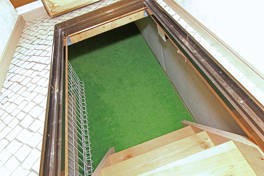 階段を一歩一歩進みます_MG_9931b