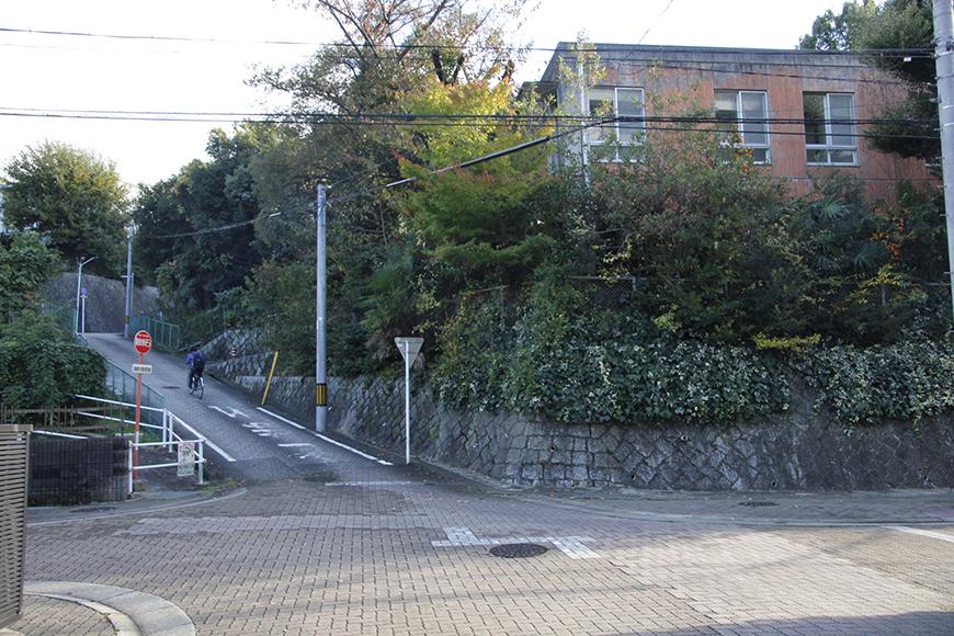 素敵な趣きの建物ばかりのお散歩コース_MG_9419