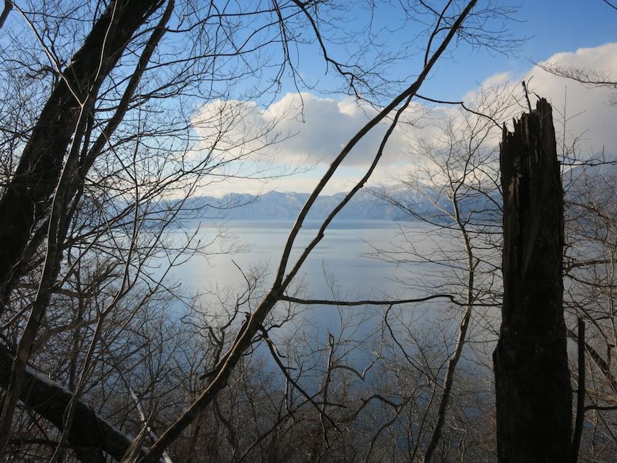 樹々の合間に見える支笏湖_IMG_4049