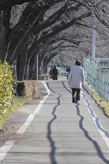 天気の良い日にはちょっとしたお散歩で健康管理!_MG_1750