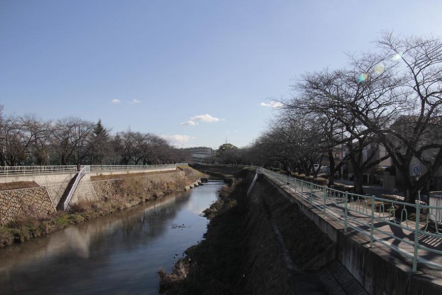 川沿いの明徳公園・香流川ウォークコースです_MG_1761