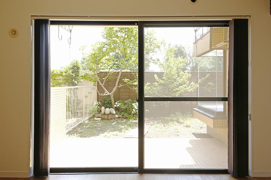 窓の外から、お庭を眺めると・・・うずうず・・・