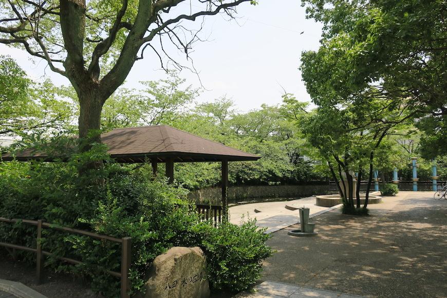 【八田 水の広場】緑豊かです_IMG_0179