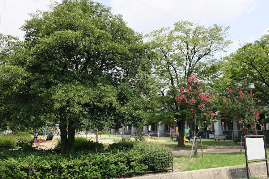 近鉄名古屋駅ロータリーに隣接の公園です。_IMG_0199