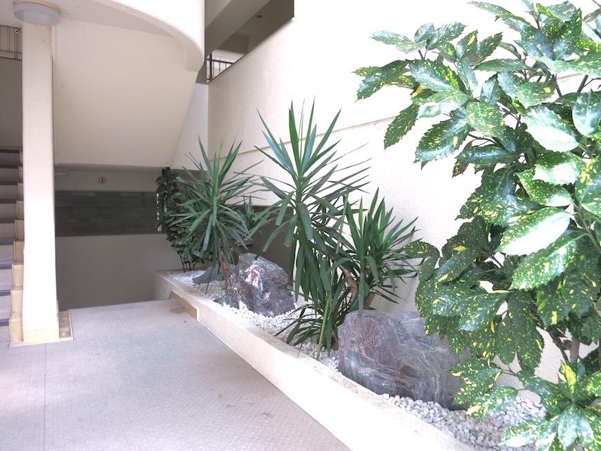 東山レジデンスの植物たちIMG_6045