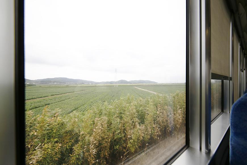 都会の喧騒から逃れ、JR東海道本線に乗車!  流れ行く車窓の眺め、ちょっとした夏休み気分・・・_MG_8598