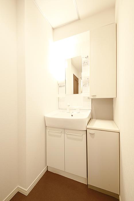 こちら独立洗面台。収納もタップリ!_MG_9412