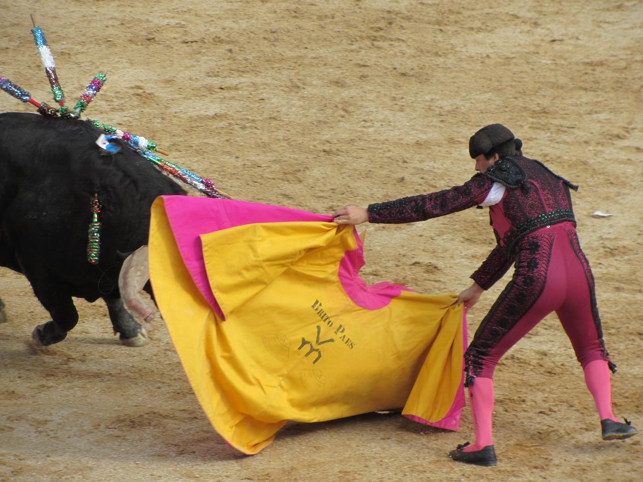 生と死が背中合わせの命を懸けた闘牛のシーン。_bull-fighting-1080919_1280