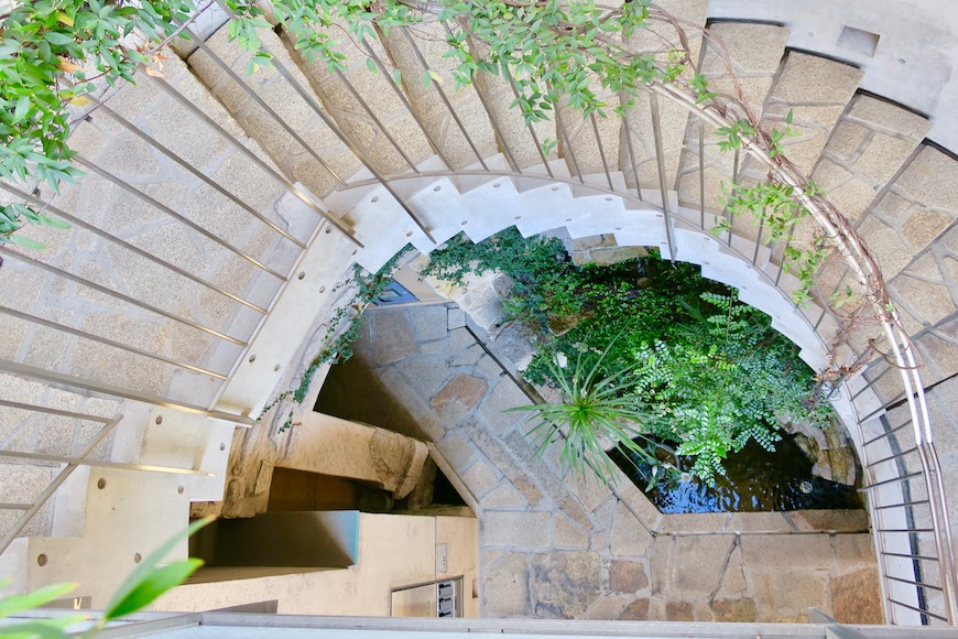 【2000 HOUSE】中庭の風景。ここはオアシス。美しい景色。0773