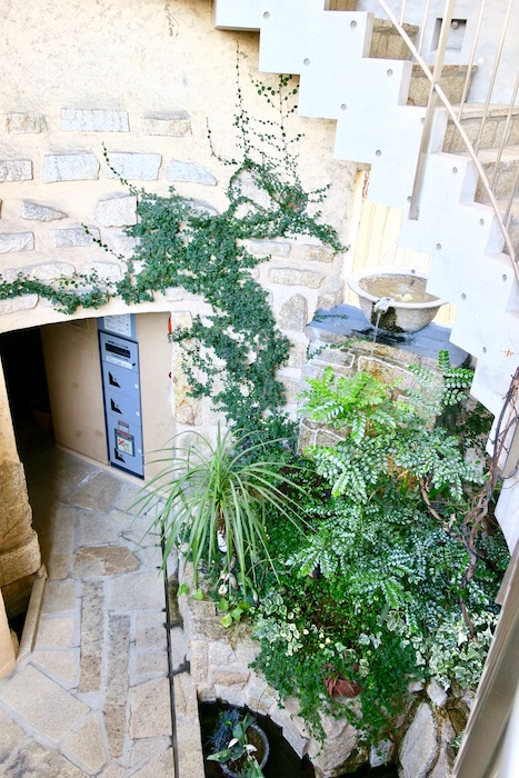 【2000 HOUSE】中庭の風景。ここはオアシス。