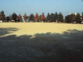 みどり公園