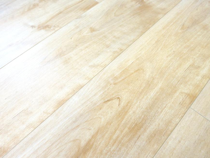 プリマノッツェ西尾 壱番館 LDK ナチュラルデザインの床板 8
