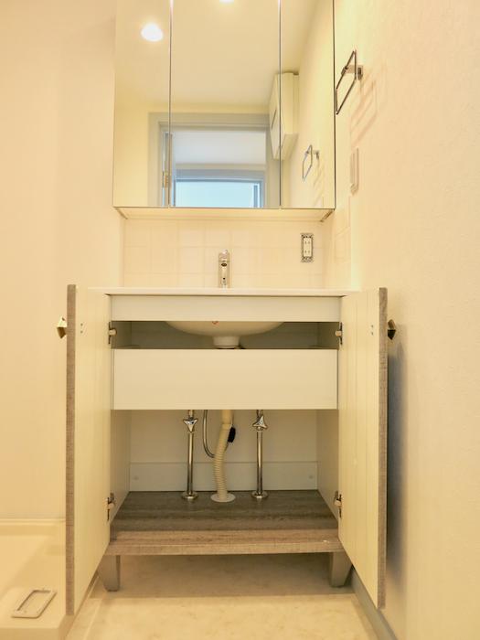 プリマノッツェ西尾 壱番館 バスルーム 洗面化粧台 収納3