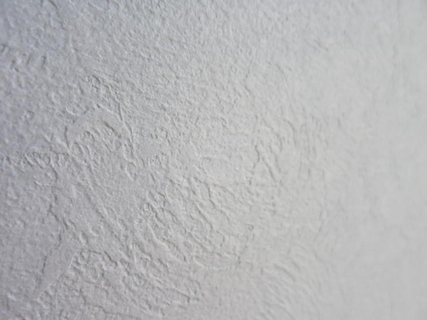 プリマノッツェ西尾 壱番館 プライベートルーム 水色上品壁紙17