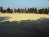 緑丘用みどり公園