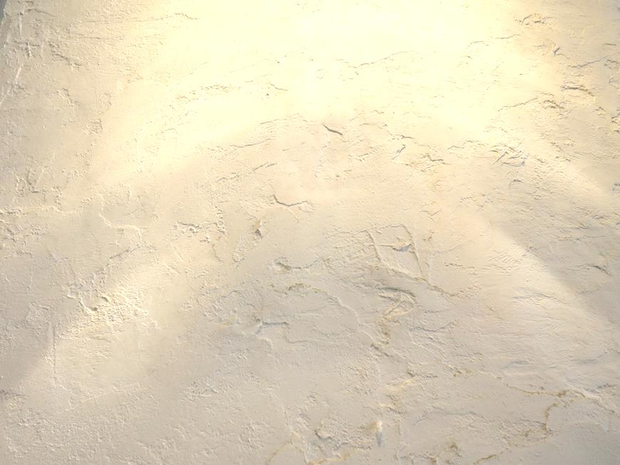 ブランチアベニュー 漆喰壁2