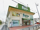 Seria 江南店
