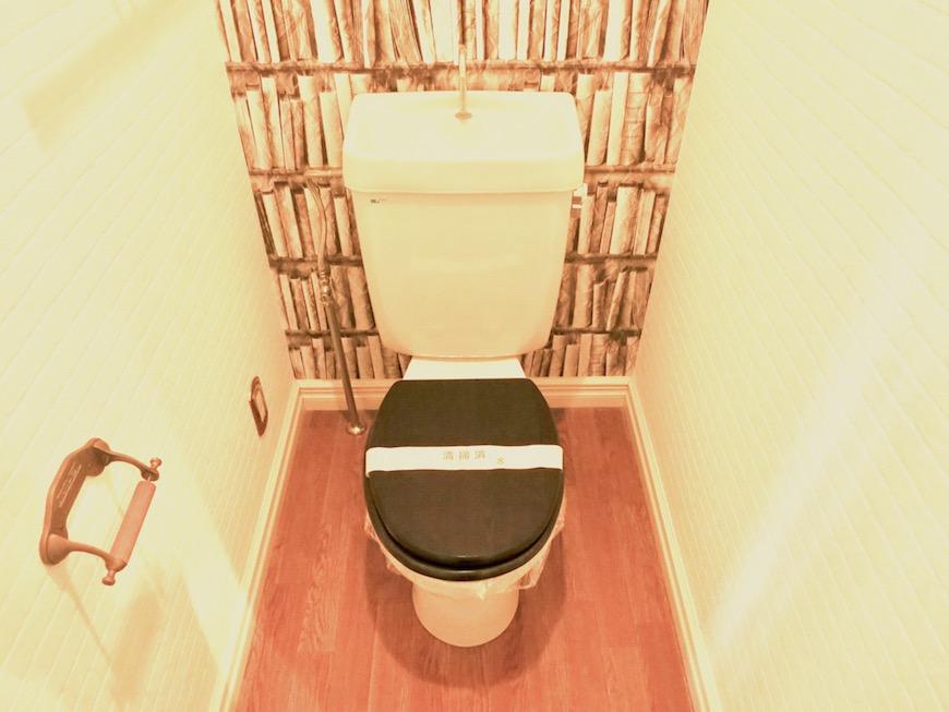 MA MAISON 参番館 本棚の壁紙のあるトイレ2