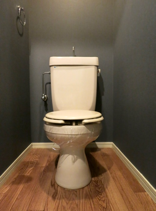 WING COURT 207号室。渋いトイレ。IMG_4305