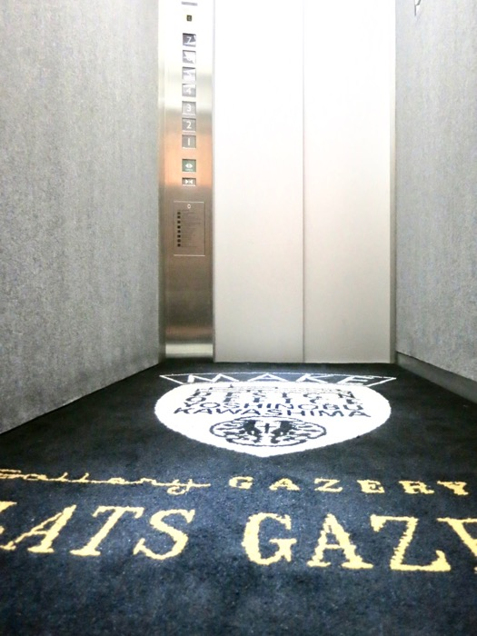FLATS GAZERY 外観・共用 自転車対応エレベーター。かっこいいカーペットに導かれてお部屋帰る。0