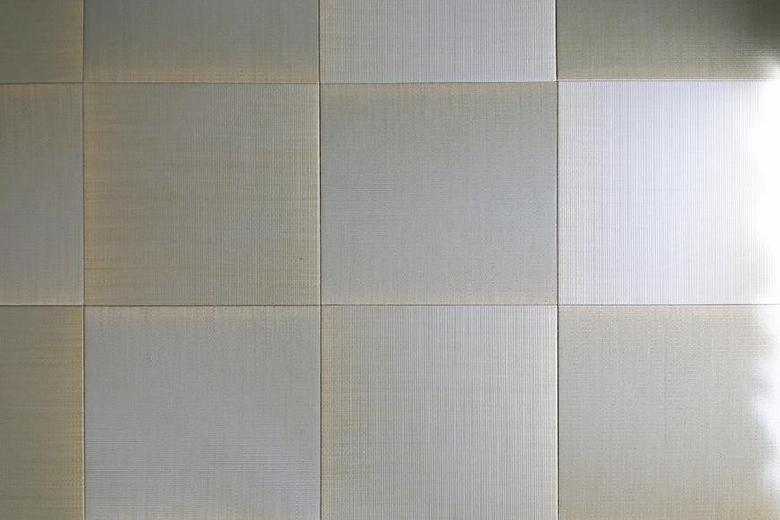 【キャッスル東栄】B棟_302号室_和室_琉球畳_MG_2461