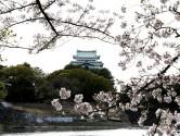 【リベルタカリーノ】周辺環境_名古屋城