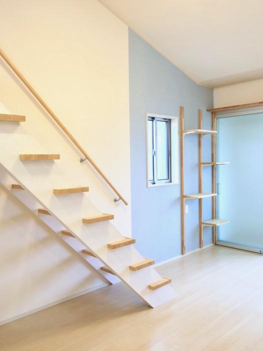 その他のカラーのお部屋。ピンク&ブルー。【Le Cat】猫の為の猫専用賃貸住宅。1