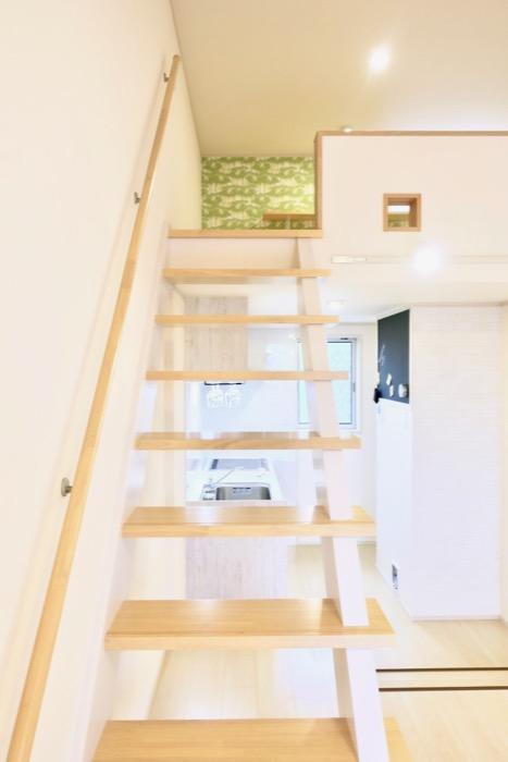 ロフトへ。【Le Cat】猫の為の猫専用賃貸住宅。55