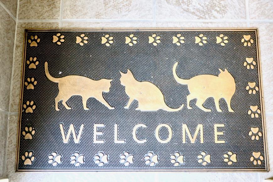 猫デザインのマットもプレゼント。【Le Cat】猫の為の猫専用賃貸住宅。0