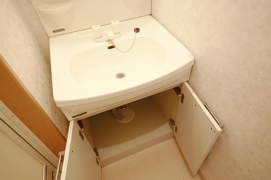 【NEXTAGE B】205号室_サニタリールーム(水周り)_独立洗面台_足もと収納_MG_0334