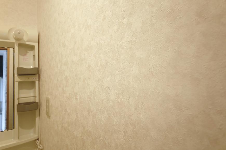 【NEXTAGE B】205号室_サニタリールーム_壁紙_MG_0431