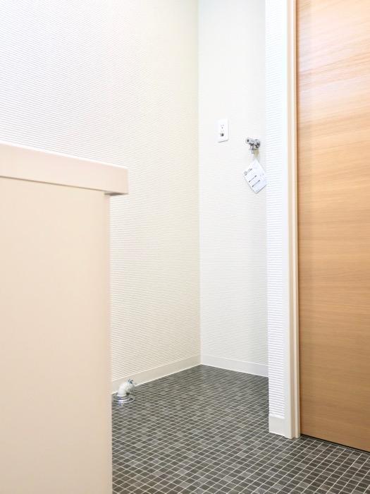 ドレッシングルーム。N APARTMENT (N アパートメント 901号室)5