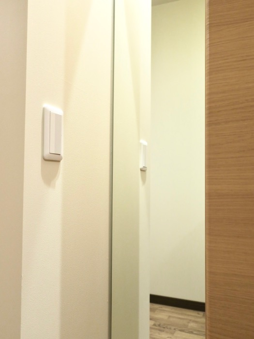 廊下。ビンテージオークの床がお洒落、N APARTMENT (N アパートメント 901号室)2
