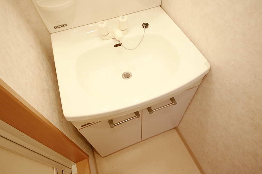 【NEXTAGE B】205号室_サニタリールーム(水周り)_独立洗面台_MG_0328