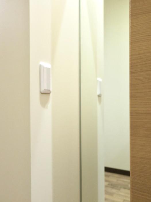 廊下。ビンテージオークの床がお洒落、N APARTMENT (N アパートメント 901号室)4