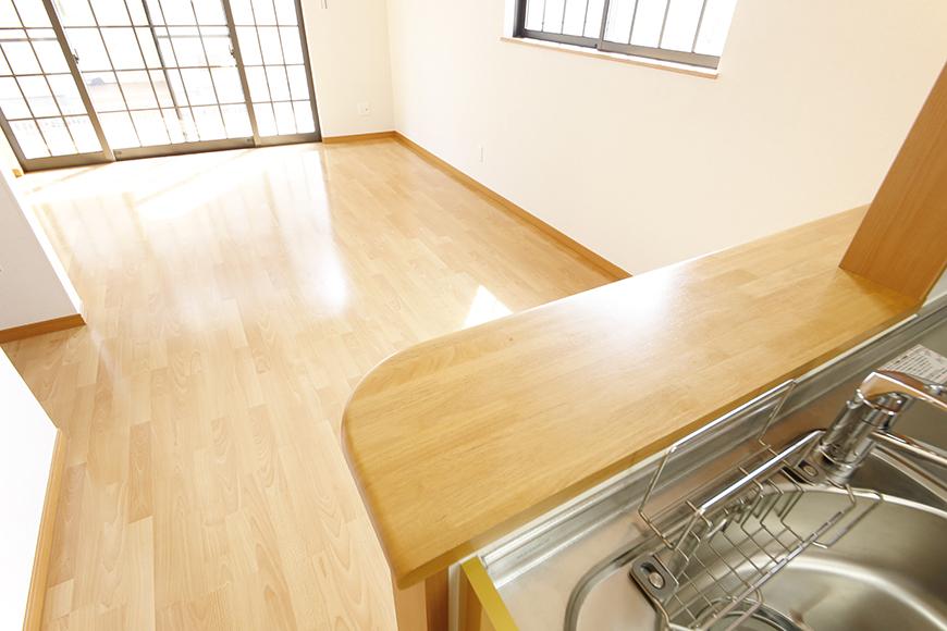 常滑【ゲーブルルーフ】102号室_1階_LDK_キッチン周り_キッチンからリビングへの眺め_MG_4431
