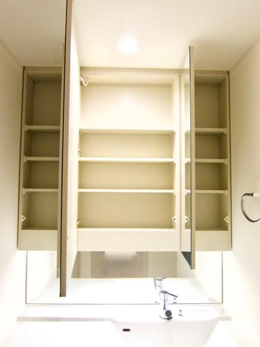 清潔感あふれるサニタリー&バスルーム。コンシェルジュがいる賃貸マンション。ロイヤルパークスERささしま9